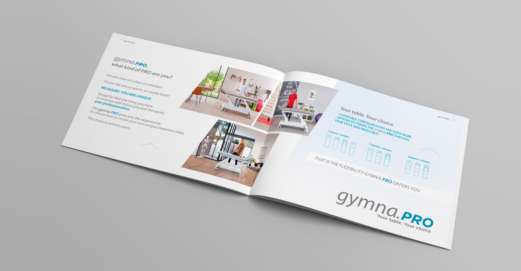 Layout of the brochure
